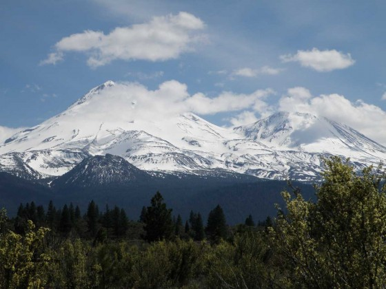 Mt. Shasta from the north
